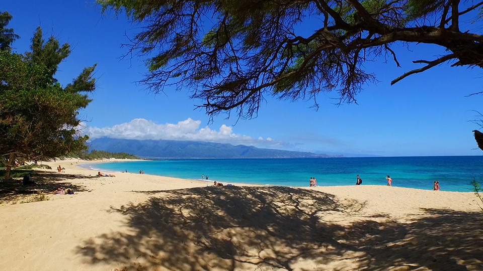 Best Maui Kids Activities Family Beach