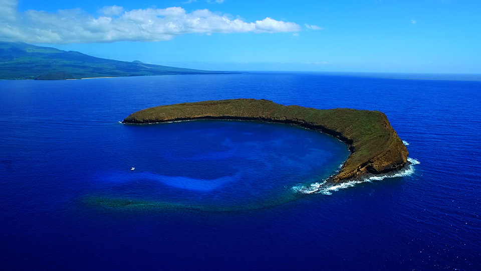 Best Kids Activities Molokini Snorkeling