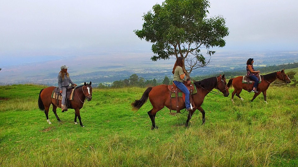Best Maui Activities Couples Horseback Tours