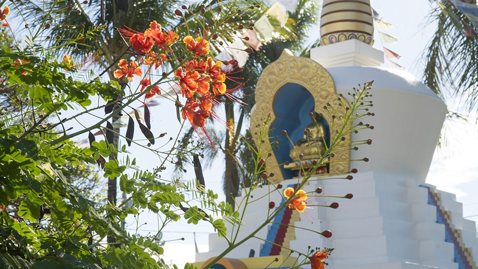 Best Off Beaten Path Paia Stupa