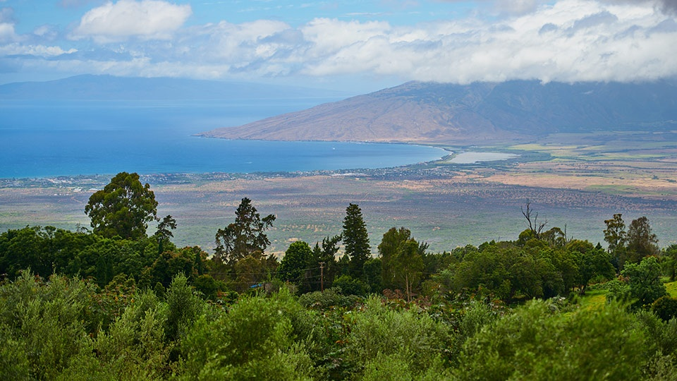 Best Maui Honeymoon Activity Tour