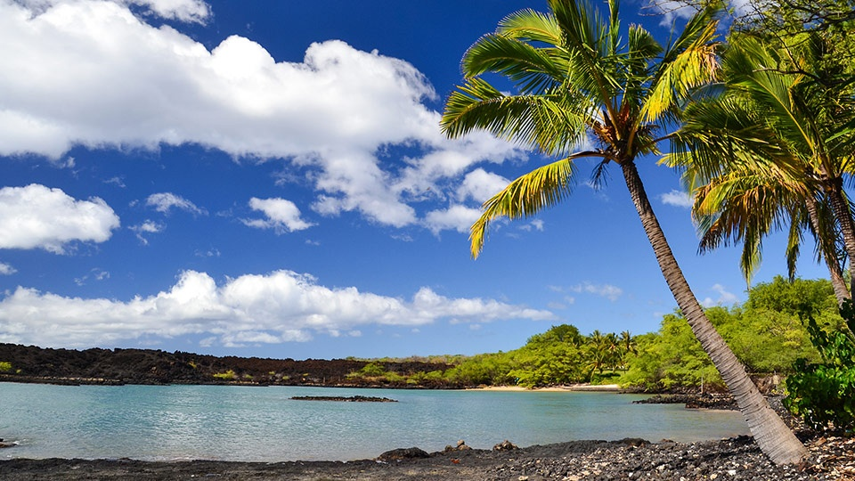 Best Maui Hikes La Perouse Bay
