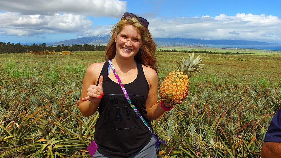 Best Made on Maui Gold Pineapples