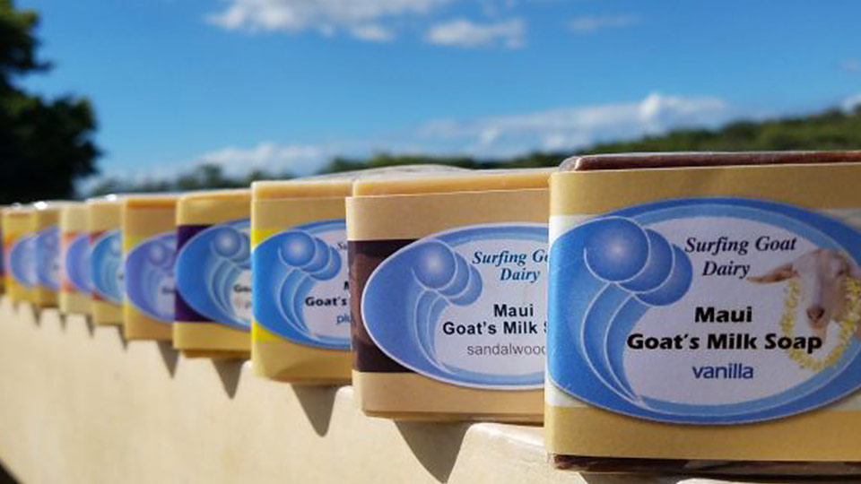 Best Made Maui Surfing Goat Dairy
