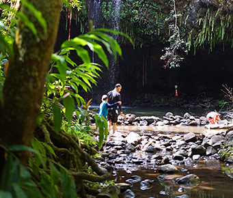 Best Maui Hikes Twin Falls
