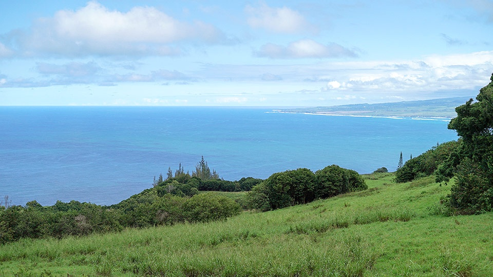 Best Maui Hikes Waihee Ridge Trail