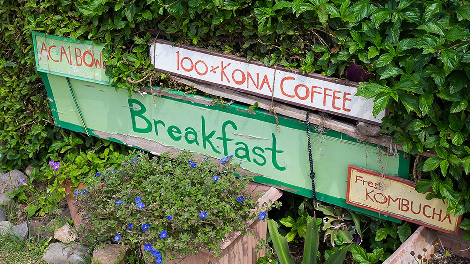 Best Hawaii Kona Coffee Farm