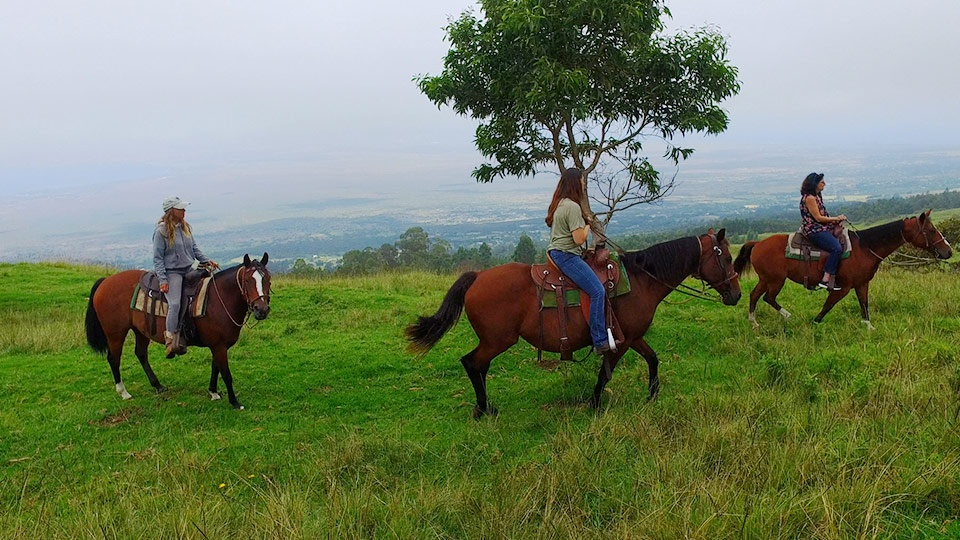 Best Maui Haleakala Horseback Riding