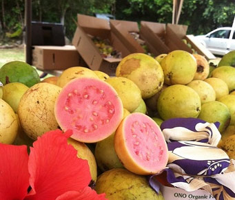 Best Locally Grown Food Market Maui Guava