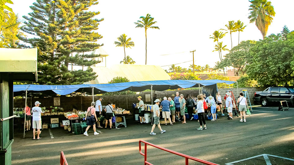 Best Hawaii Grown Food Market