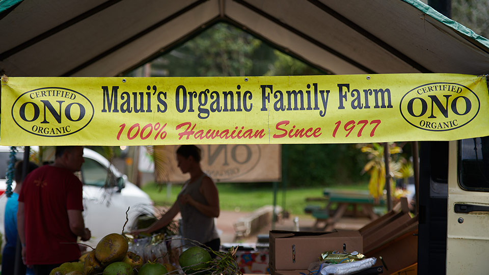 Best Hawaii Grown Ono Organic