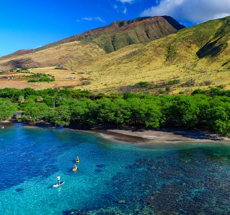 Top 30 Best Videos About Maui