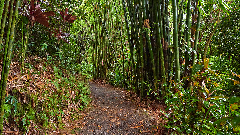 Maui Peaceful Secret Spots Garden of Eden