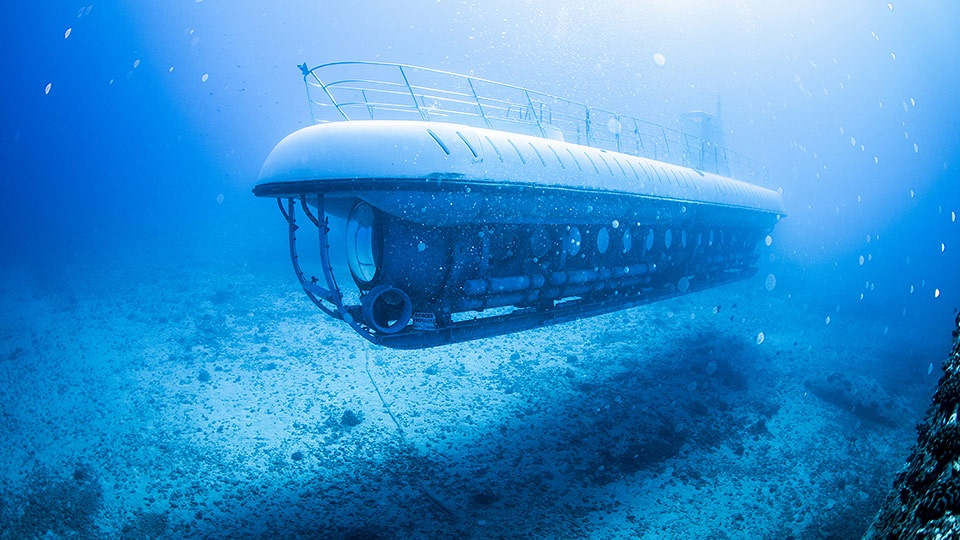 Best West Maui Atlantis Submarine