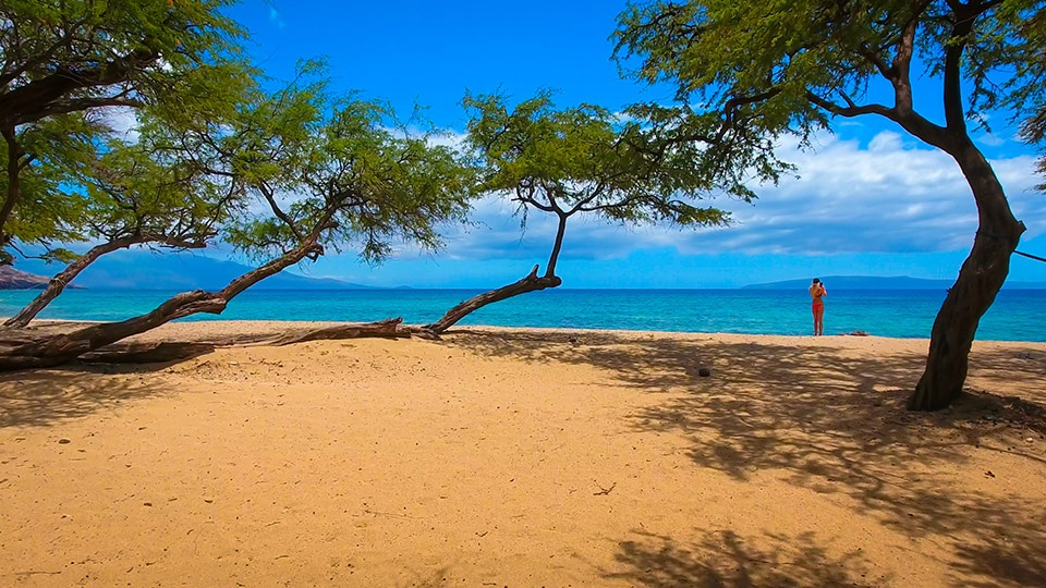 Top Maui Camping Papalaua Beach