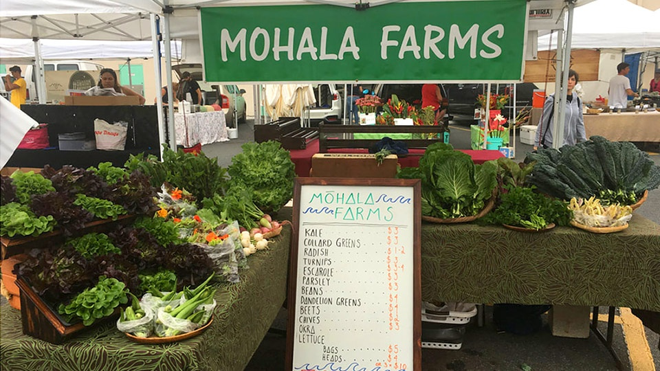Hawaii Top Organic Mohala Farms