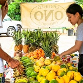 Hawaii Best Organic Ono Farms