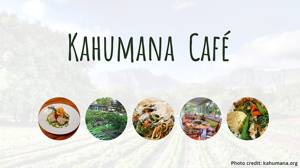 Hawaii Top Organic Kahumana Organic Farm
