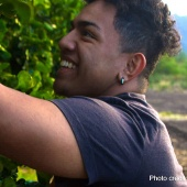 Hawaii Top Organic Ma'o Organic Farms