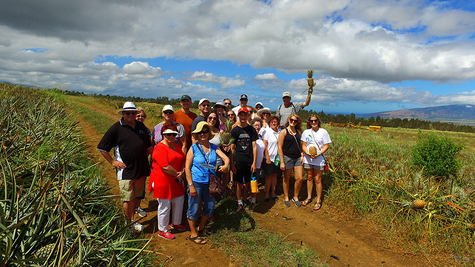 Best Plantation Farm Maui Pineapple Tours