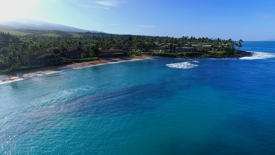 Napili & Kapalua Things To Do | North West Maui Activities