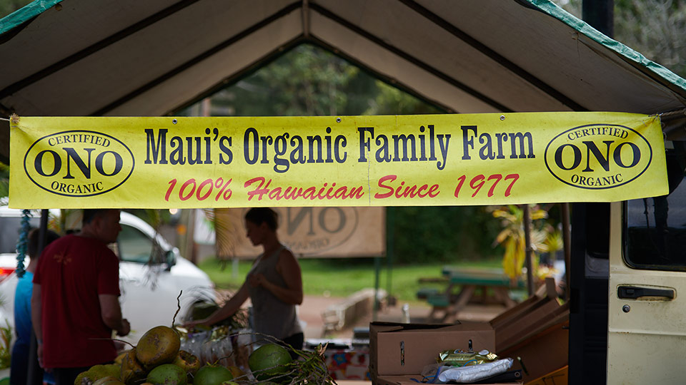 Best Plantation Maui Organic Farms