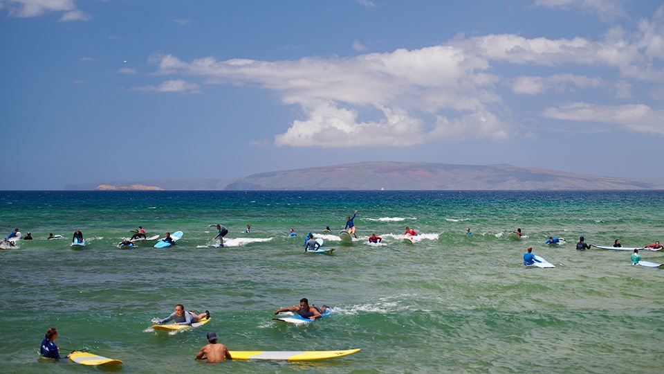 Beginner Surf Cove Kihei