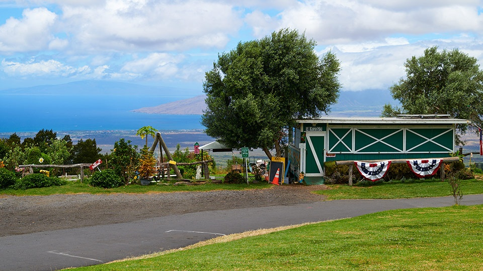 Top Budget Activities Maui Kula Country Farms