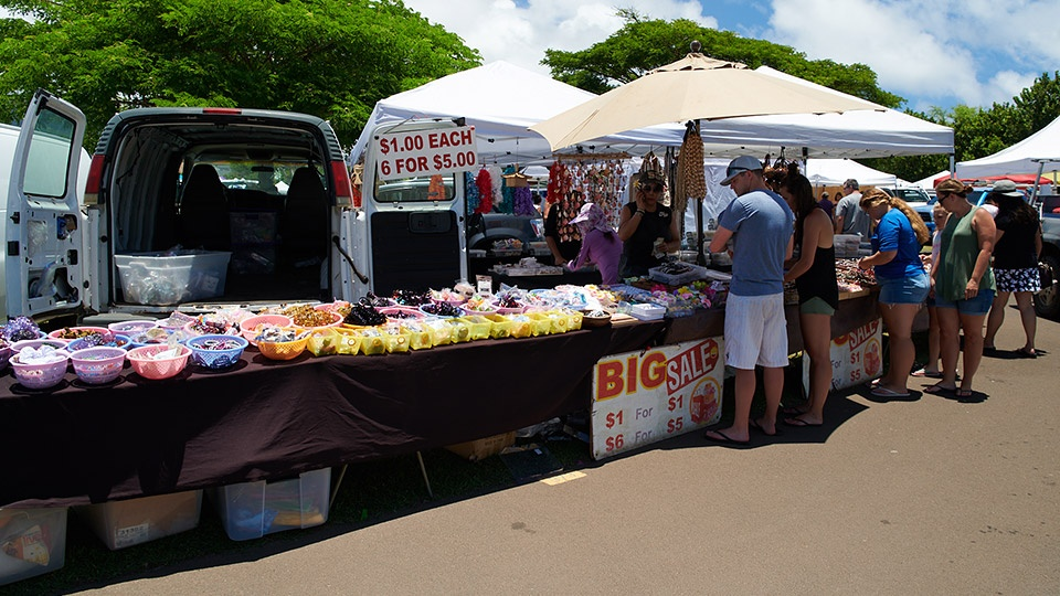 Maui Budget Activities Swap Meet