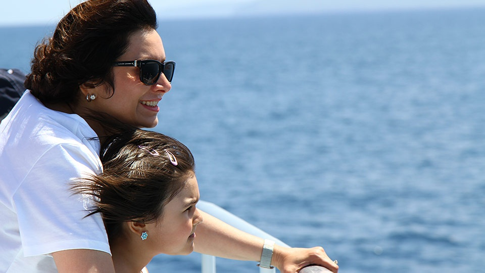Best Budget Activities Maui Whale watching
