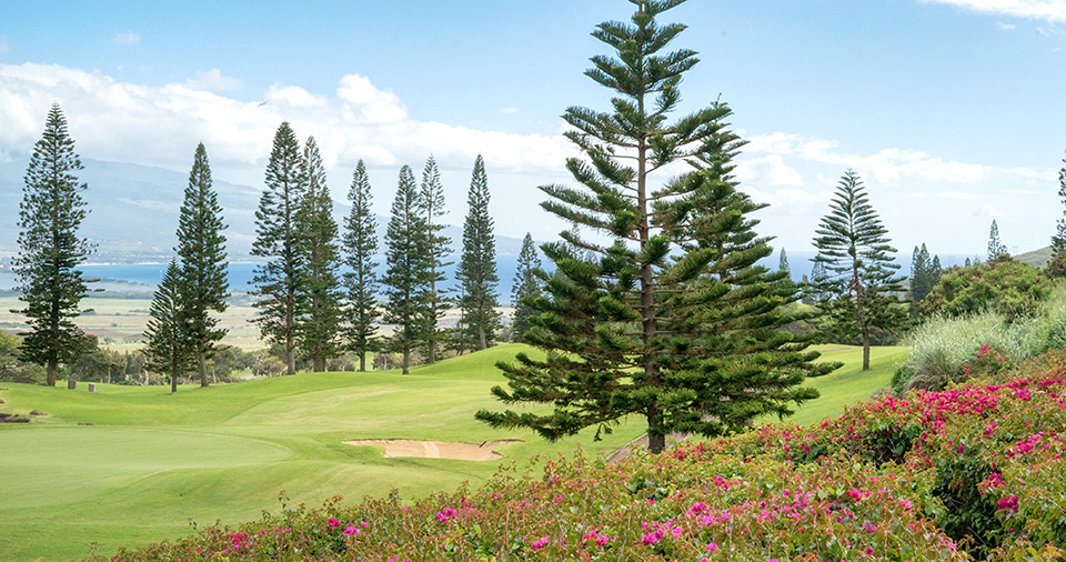 Best Maui Golf Wailea