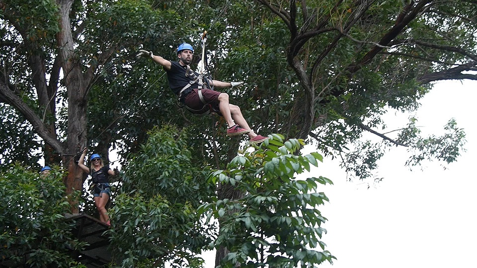 Best Maui Land Activities Zipline