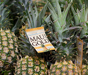 Best Hawaii Made Products Pineapple
