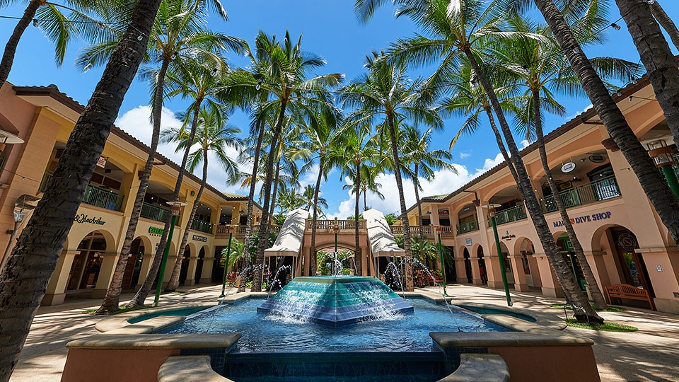 Best Wailea Activities Shops