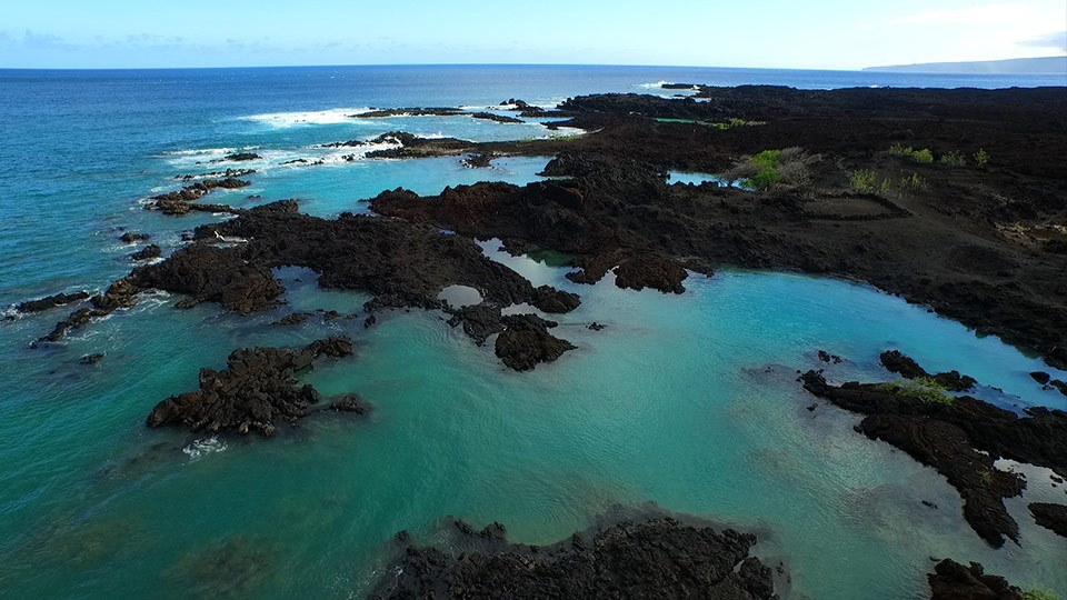 Best Maui Beach La Perouse Bay