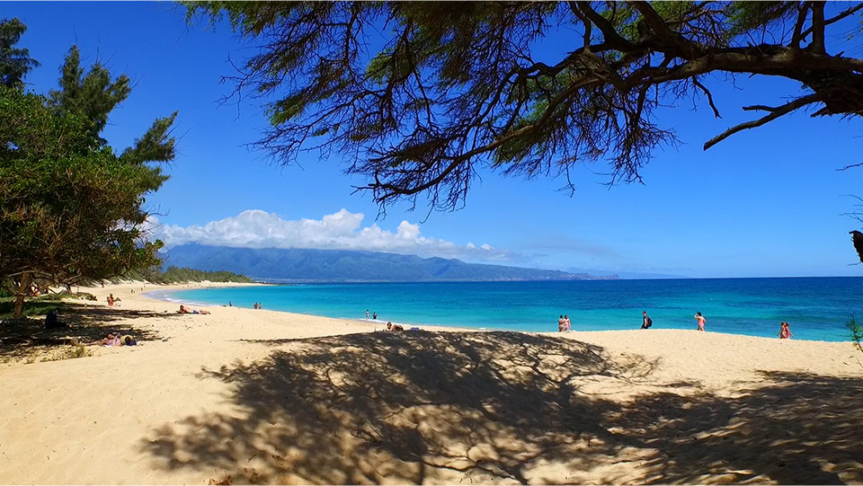 f2dd1f980e8db Hawaii Things to Do | Top 20 Things To Do & See in Hawaii