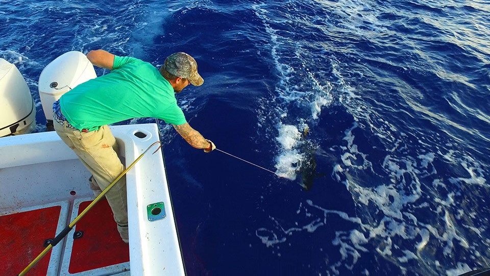 Best West Maui Sport fishing