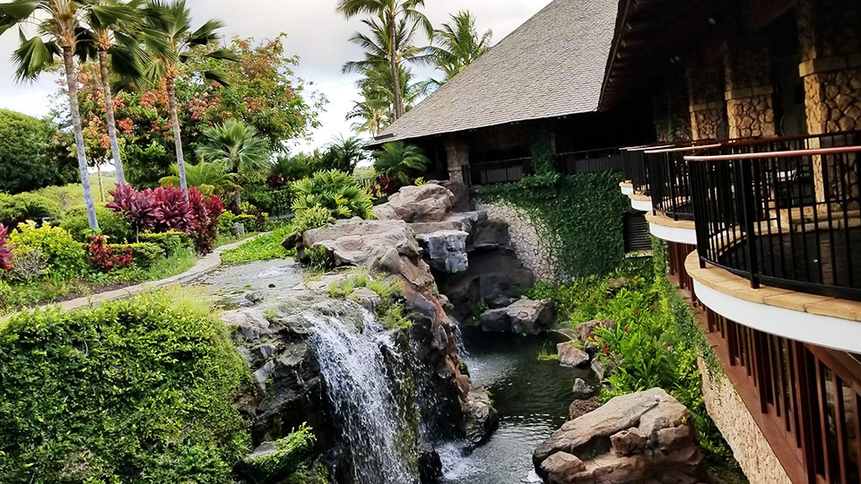 Maui Best Restaurants Hotel Wailea
