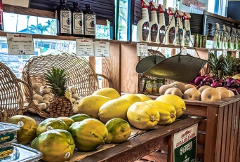 Top Maui All Organics Food Sources