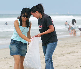 Help Keep Maui Hawaii Beaches Clean