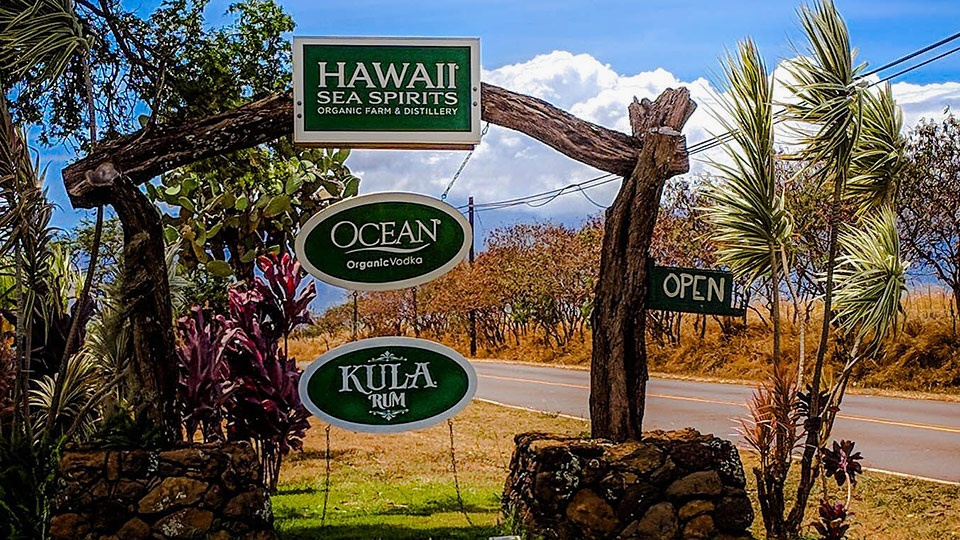 Best Maui Activities Ocean Vodka Tour