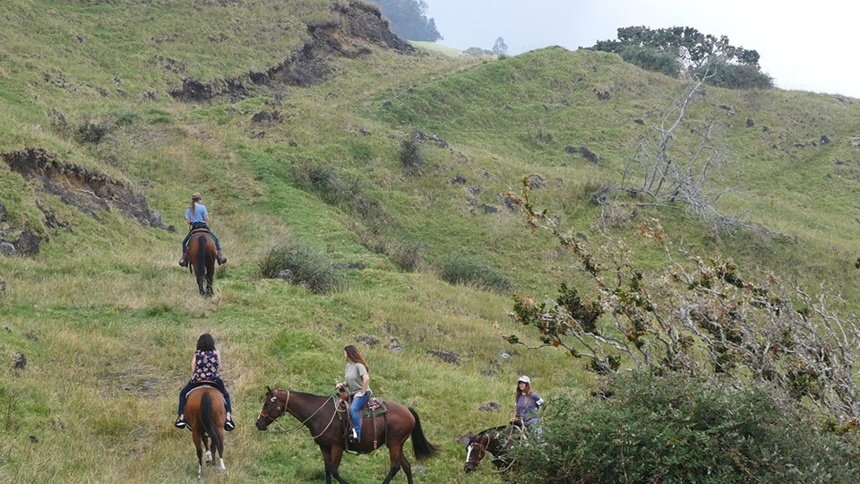 Best Maui Activities Horseback Riding