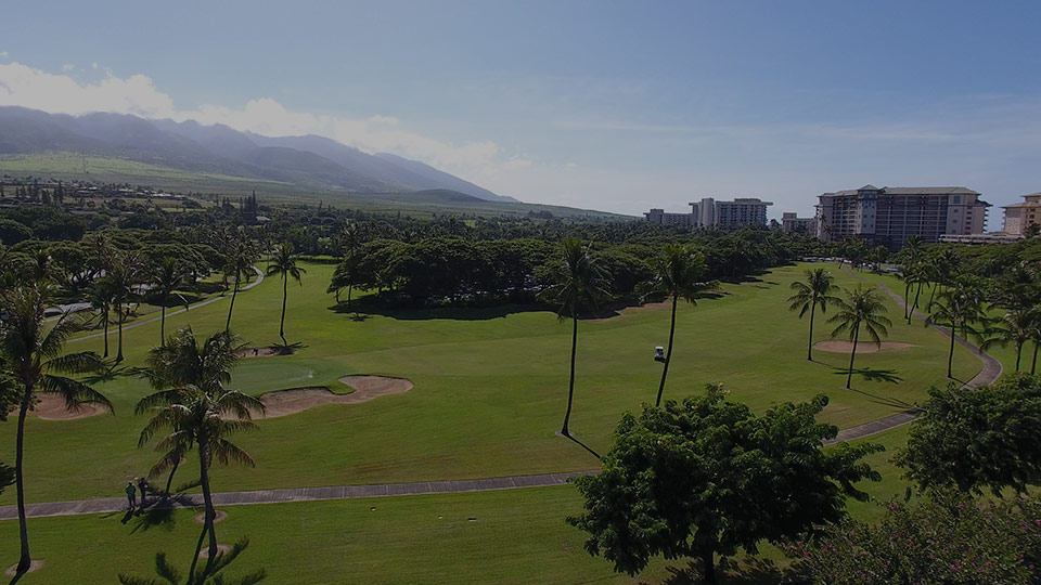 Best Maui Activities Golf course