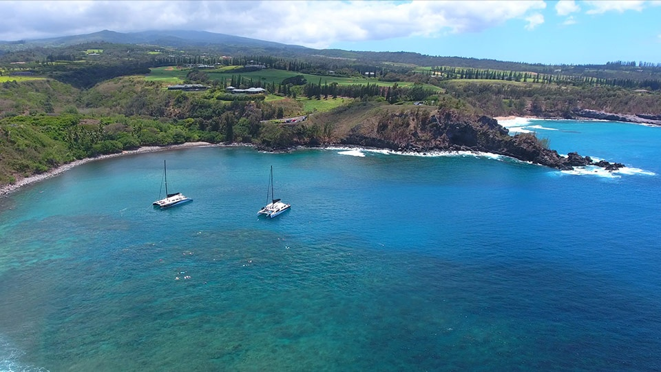 Best Maui Activities Honolua Bay