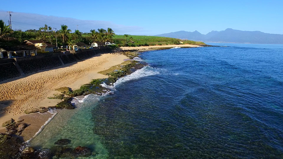 Best Maui Activities Ho'okipa Beach