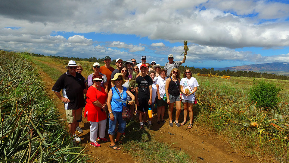 Best Maui Activities Pineapple Tour
