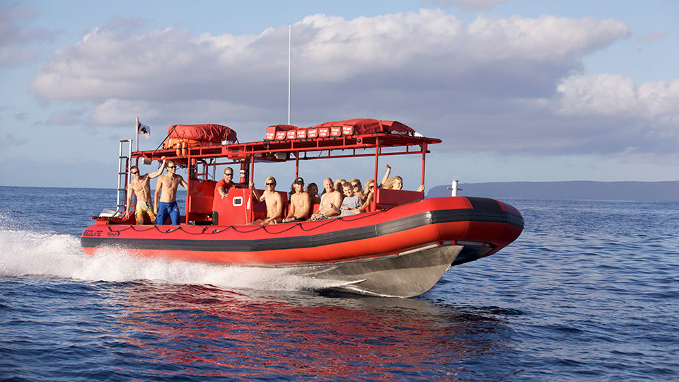 Top Maui Ocean Activities Rafting