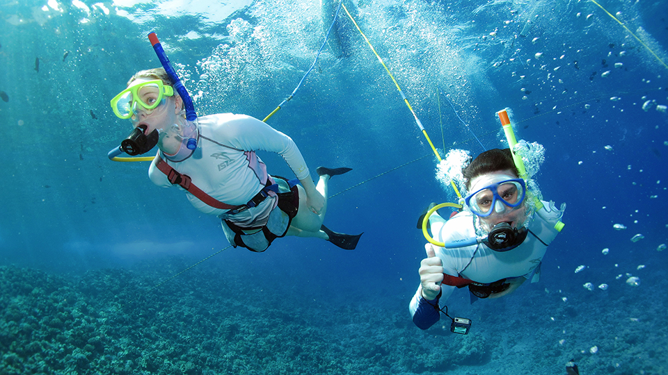 Best Maui Ocean Activities SNUBA Diving
