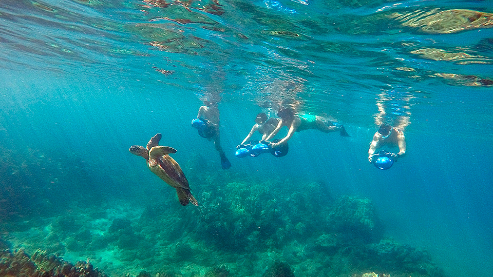 Best Maui Ocean Activities Scooter Scuba