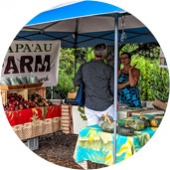 The Wednesday Market Maui Best Organic